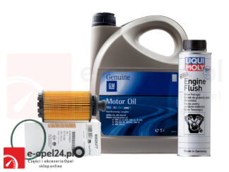 Zestaw oryginalnego filtra oleju GM, 5L oleju GM 5W-30 i płukanka Liqui Moly Engine Flush Opel Antara / Insignia A B / Zafira C - 2.0 CDTI - 95528277 / 19 42 003 / 2640