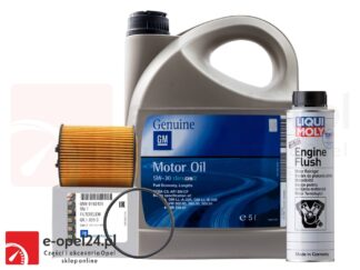 Oryginalny filtr oleju GM + 5L oleju GM DEXOS II 5W30 + płukanka Liqui Moly- Opel Astra G / Corsa C / Omega B / Signum / Vectra B C / Zafira A- 1.8 / 2.5 / 2.6 / 3.0 / 3.2- 650308 / 1942003